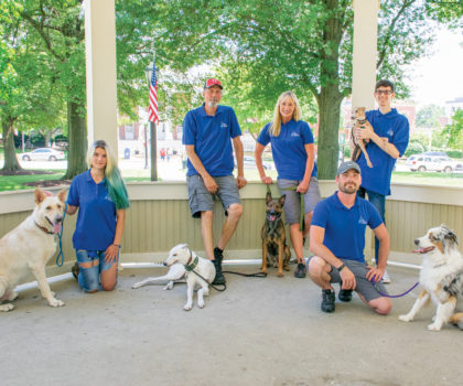 The Dog Wizard brings top-quality dog training to you