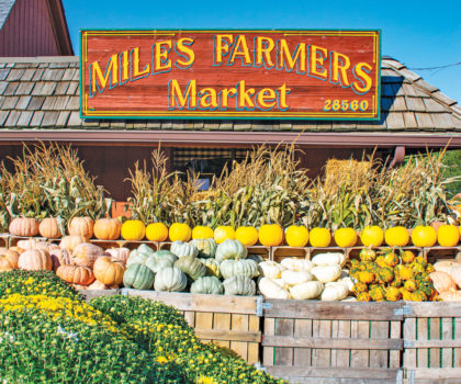 Miles Farmers Market is all about offering the best bounty fall has to offer