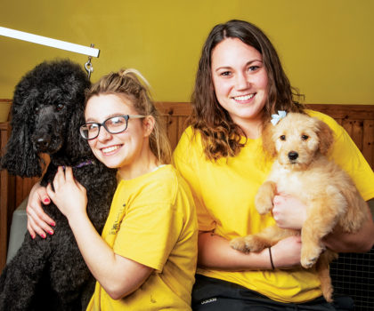 Sandra Jenkins and the staff at Dog Gone Crazy are wild about offering top-tier pet grooming, at your convenience