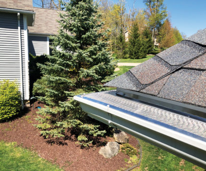 The Gutter Boys can repair your gutters and cover them, too