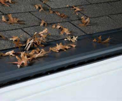 Since 1998, The Gutter Cover Company has been a locally owned and operated source for the only gutter protection you need