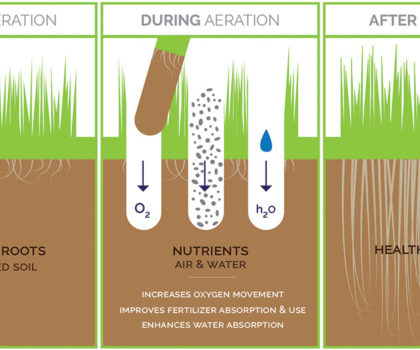 Here's why every homeowner should finish the summer season with aeration