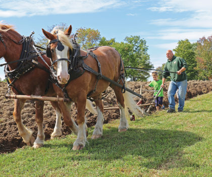 Fall Harvest weekends at Lake Metroparks Farmpark are loaded with family fun