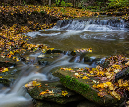 Here's where you can find explosive displays of fall color