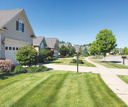 Southwest Landscape Management can beautify any lawn or landscape