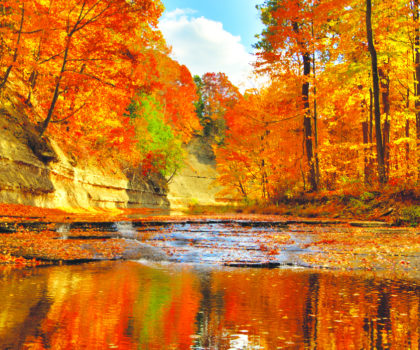 Here's a list of the best fall foliage vantage points in Lake County