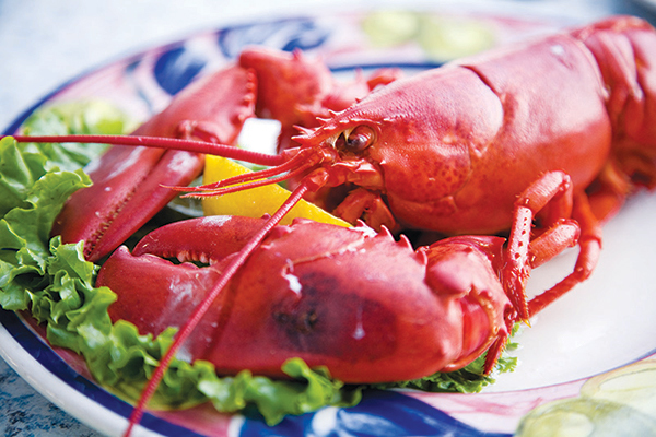 lobster-w-lemon-1017.jpg?mtime=20171016141415#asset:120076