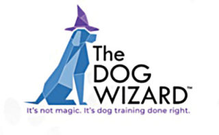 The Dog Wizard