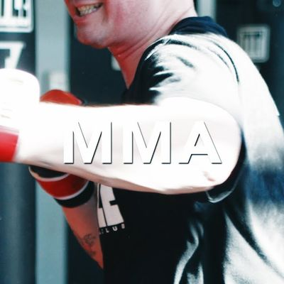 Title Boxing MMA